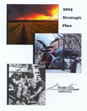 1995 strategic plan